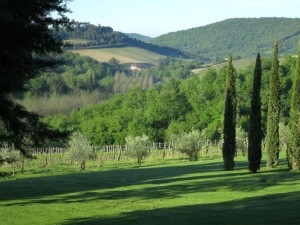 Tuscany - Chianti - panorama
