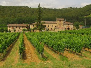 Sightseeing Tours of Siena Chianti Wine