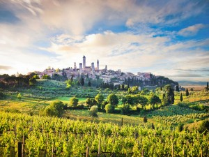 Sightseeing Tours of Siena