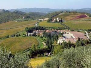 Greve in Chianti - Panorama