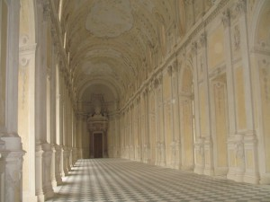 Sightseeing Tours of Turin and Venaria