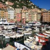 Camogli - Harbour